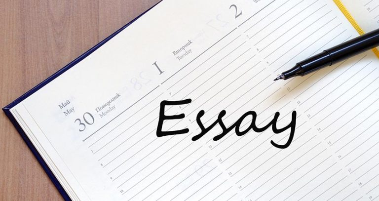 Ecology and environment essay